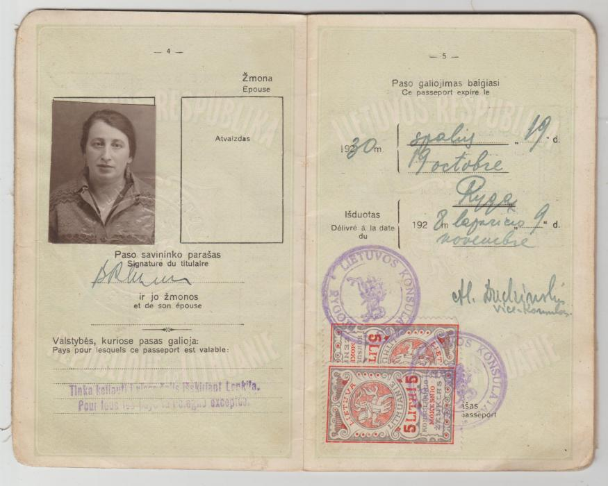 Lithuanian passport with consular stamps